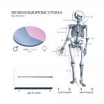 Emangiopericitoma EV